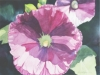 Hollyhocks, watercolor, 22x22, Ann C. Taylor