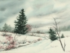More Snow Forecast, Watercolor, 21x26, Ann C. Taylor