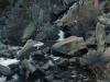 Tahoe Stream - alfa 2018_preview