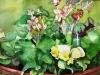 "Begonia With Yellow Flower, Watercolor, 8\""x10\"", Hana Aviv"
