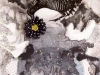 "Jane Dell \""Black &White of It\"""