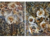 Browntide (diptych)