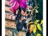 Vibrant-Leaves-Framed