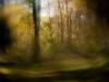01_Autumn Haze_Carl Geisler_preview (1)