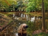 02_Lady in the Pond_Carl_Geisler_preview (1)