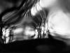 05_TreeintheHouse#5_CGeisler_preview (1)