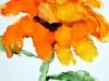 jhawaka_retro_sunflower-073
