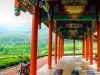 Yantai-Temple