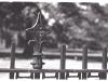 New-Brunswick-Fence