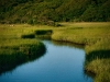 Menemsha-Creek